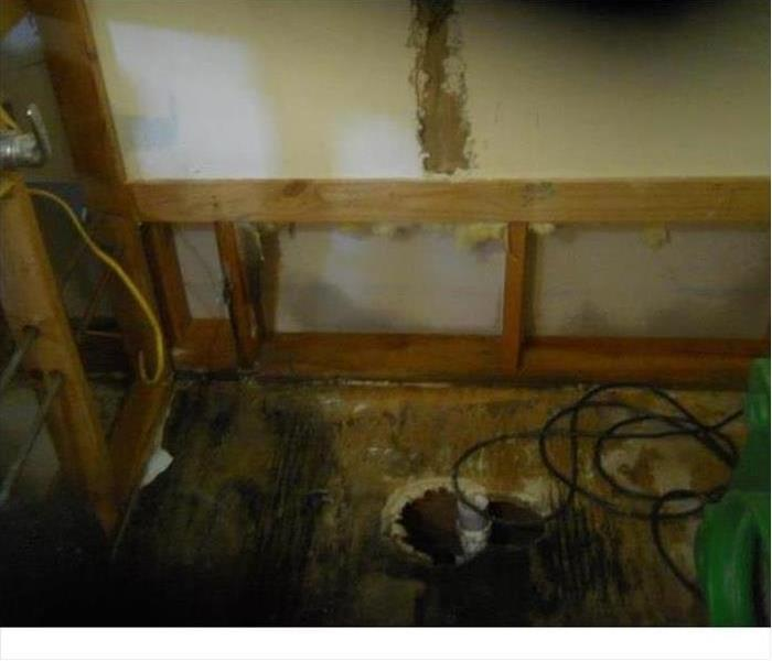 Knoxville Mold Damage from a Water Leak Before