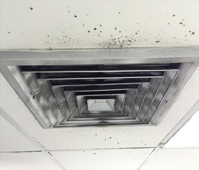 Mold Remediation Do You Have Mold in Your Air Ducts?