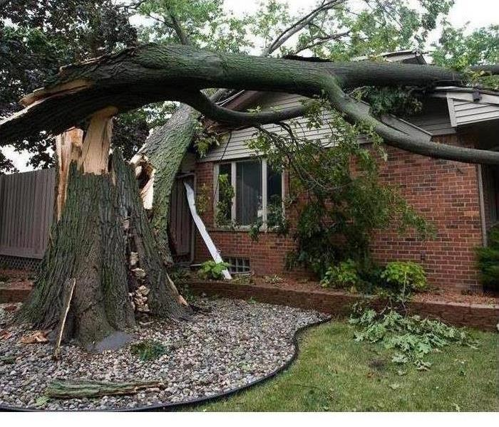 Storm Damage Tools For Keeping You Safe